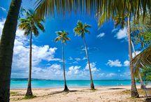 The beauty of Puerto Rico.