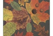 Fall ideas / by Laurie Severson