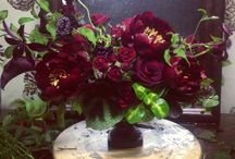 Herb, Flower, Botanical