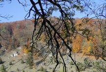 Herbstimpressionen / aus dem Gailach- und Altmühltal