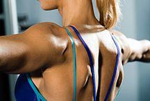 Back & Bicep Workouts