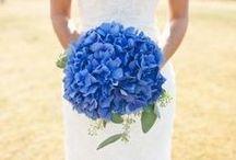 cobalt wedding