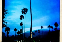 Palm Springs / by Pauline Giraut