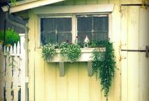 Flowers and Gardens / by Faith Singer (Arthur)