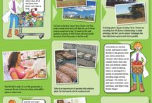 Farm to plate / Year eight integrated work