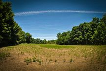 220 Acres Manlius, Onondaga County, New York