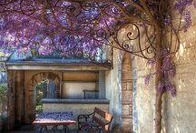 my secret garden!! / by Kim MacLean