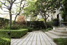 Garden - Paving