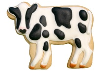 Galle vaca
