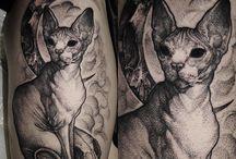 tats refs cats