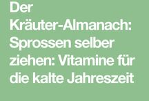 Kräuter&Sprossen