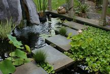 inspirations bassins