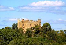 château de Montfaucon / visite du vignoble et des chais au Château de Montfaucon dans l'appellation côte du Rhône. Réservation des visites sur winetourbooking.com
