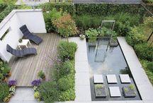 Raslouw Gardens 2 / by Jo Clinton