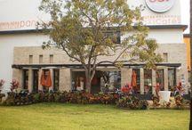 Restaurantes TEN - Panespol
