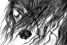 black pen horses