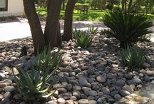 Xeriscaping / by Enhance Floors & More