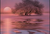 Winter  ~ Pink/Purple / by Glorynn Ross