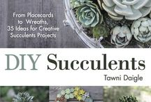 Succulents - Plants that My Non Green Fingers Will Battle  a Bit Harder to Annihilate