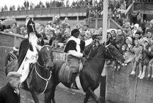 Pieten te paard / Pieten te paard / ezel  ... van 1850 tot heden!