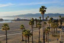 California / by Caroline Craig