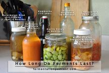 lacto ferments