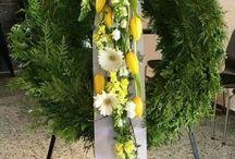 pohřby