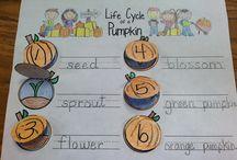 Teaching in the fall