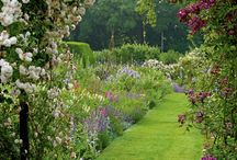 Gorgeous Gardens / by Gypsy Thread ~ Carey