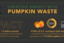 Fun Facts About Energy