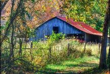 Country Life / Buildings and scenery / by Terri Mancoske
