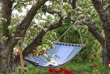 Tuin boomgaarddeel