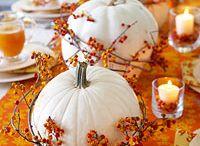 Festivities : Halloween/October / by Katie Harness