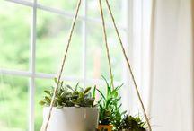 acessorios para jardim de inverno