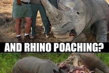 Poaching, trophy hunting etc