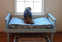 Beds for Yorkies