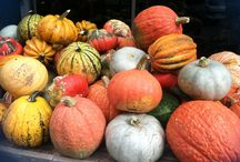 Loving Fall / all about Fall -- Halloween, cooking, decorating