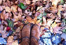 Fall*Winter