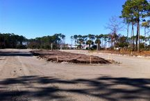 Cipriana Park Phase 4 / Cipriana Park is the fastest growing new home community in Grande Dunes Myrtle Beach with new home sales presents the 4th and final planned development phase. / by Cipriana Park