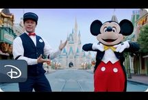 Hoteles en Disney World