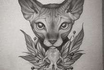 Sphinx cat ✏