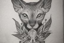 Sphinx cat ✏