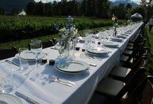 Pemberton weddings / Weddings in Pemberton BC