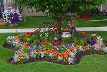 proyecto jardin