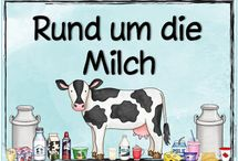 Kuh (Milch)