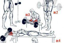 Workout - Forearm