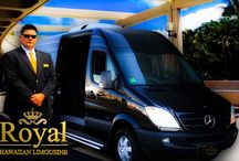 Honolulu Airport Transfer / Royal Hawaiian Limousine offer Fast & Friendly service between the Honolulu International Airport, Honolulu airport limousine, Limo to honolulu airport and Honolulu airport car service at http://www.royalhawaiianlimousine.com/honolulu-airport-transfer/