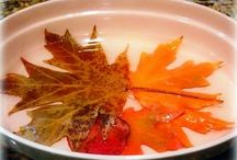 Πως διατηρώ φρέσκα ....τα ξερά φυλλα