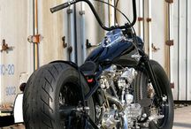 Harley D / by Heather Scafidi
