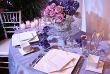 Our Favorite Wedding Vendors / The many vendors that we LOVE working with. All located in or around Saratoga Springs, NY.